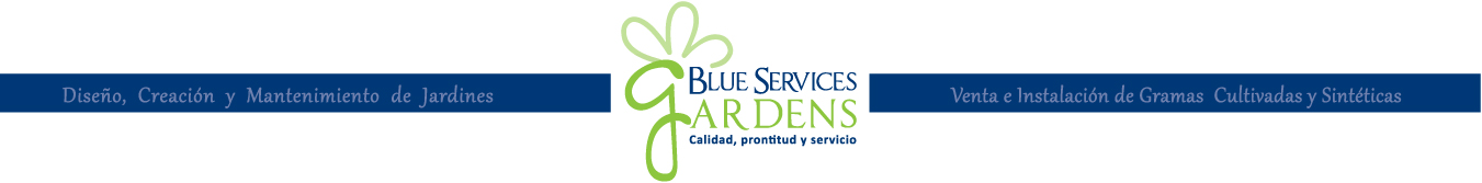 Blue Services Panamá